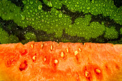 Water Melon Stock Images