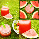 Water melon smoothie on the grass Royalty Free Stock Photography