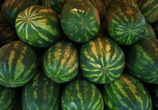 Water-melone Royalty Free Stock Images