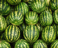 Water-melons Royalty Free Stock Photography