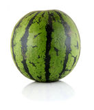 Water-melons Stock Photo