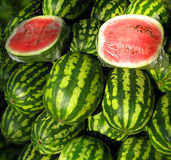Water melons. A pile of water melons on a street market stock images