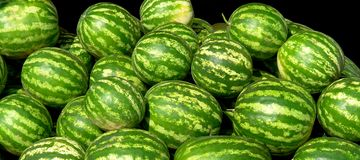 Water-melons Stock Photography
