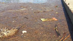 Water met afval stock videobeelden