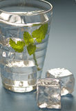 Water met kruiden Royalty-vrije Stock Foto