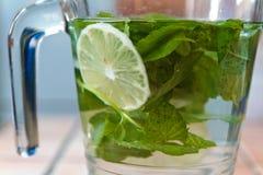 Water met munt en citroen Royalty-vrije Stock Afbeeldingen