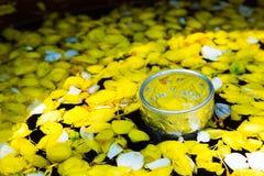 Water met parfum en levendige bloemenbloemkroon wordt gemengd, voor Songkra die Stock Foto
