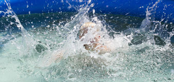 Water met vreugde royalty-vrije stock foto's