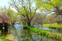Free Water Mill And River Royalty Free Stock Images - 48683679