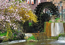 Water Mill on the lower Rhine Stock Photography