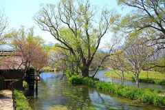 Water mill and river Stock Photography