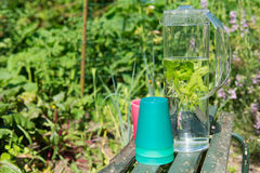 Water with mint and lemon balm Royalty Free Stock Images