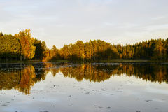 Water mirror. Water as mirror. Photos from Sweden Stock Images