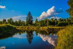 Water mirror Stock Image