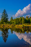 Water mirror Stock Photography