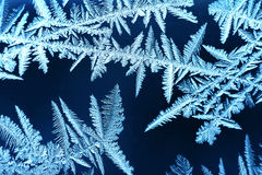 Water misteries 1. Window frost in  could winter Royalty Free Stock Image