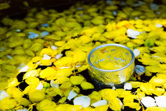 Water mixed with perfume And vivid flowers corolla , for Songkra. Tighten draw water small leaves floating in Water mixed with perfume And vivid flowers corolla Stock Photo