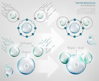 Water molecule. The illustration of bio infographics with water molecule in transparent style. Ecology, biotechnology and biochemistry concept. Water molecule Stock Images