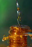 Water and money. Water drops and gold money Stock Photos