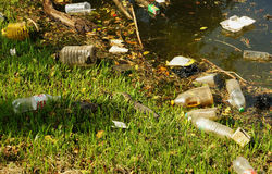 Water monitor lizard surround by plastic wastes Royalty Free Stock Photo