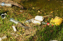 Water monitor lizard surround by plastic wastes Stock Photos