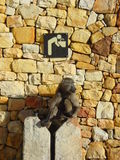Water Monkey. Baboon guarding the drinking water tap stock image
