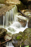 Water of a mountain stream Royalty Free Stock Photography
