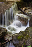 Water of a mountain stream Stock Photo