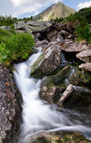 Water in mountain stream Stock Image