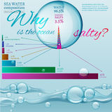Water in nature. Water is the driving force of all nature. Bio infographics with water composition diagram in transparent style. Ecology and biochemistry concept Stock Images