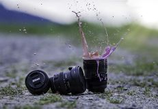 Water, Nature, Grass, Photography Royalty Free Stock Images