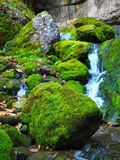 Water, Nature, Vegetation, Stream Stock Images