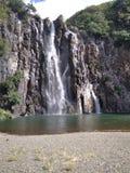 Waterfall Réunion Island sauvage earth