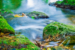 Streams and mosses formed by rocks stock images