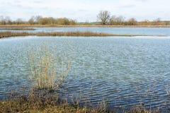 Water in ondiep meer die subtiele golven vormen door de wind - 2 stock foto's