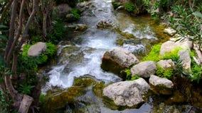 Water op een kleine rivier stock video