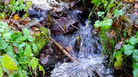 Water op een kleine rivier stock footage
