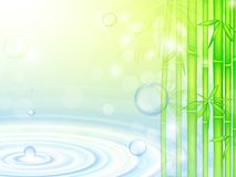 Water over bamboo Stock Photography