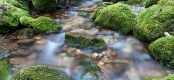 Water Over Rocks Royalty Free Stock Photography