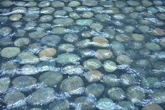 Water over Stones. Water flowing over round stones Stock Photography