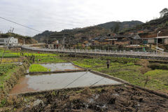 Water paddy field of mountain village royalty free stock image