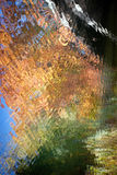 Water paint. With autumn colors Stock Photography