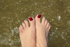 Water pedicure. Stock Images