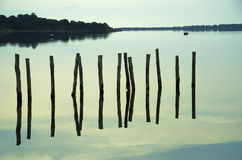 Water piles in the lake Stock Images