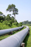 Water pipeline, Brunei. Coated twin big water transmission pipeline, across green rural area, Brunei Royalty Free Stock Images