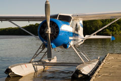 Water Plane Royalty Free Stock Image