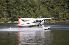 Water plane. White water plane landing on a river stock image