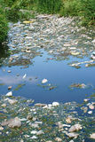 Water pollution Royalty Free Stock Photo
