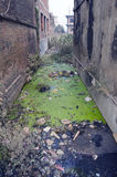 Water pollution dirty with rubbish sewer canal in Nepal Stock Photography