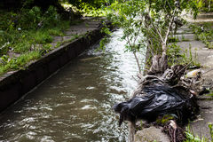 Water pollution. Garbage on the urban stream banks Stock Photos